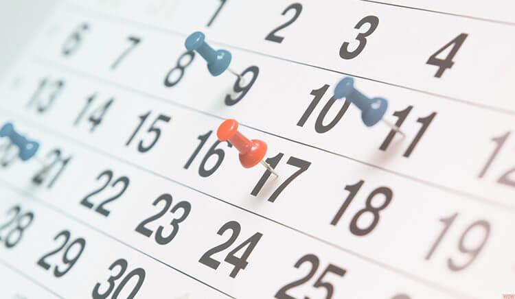 desenvolva um calendario editoria - como ganhar seguidores no instagram