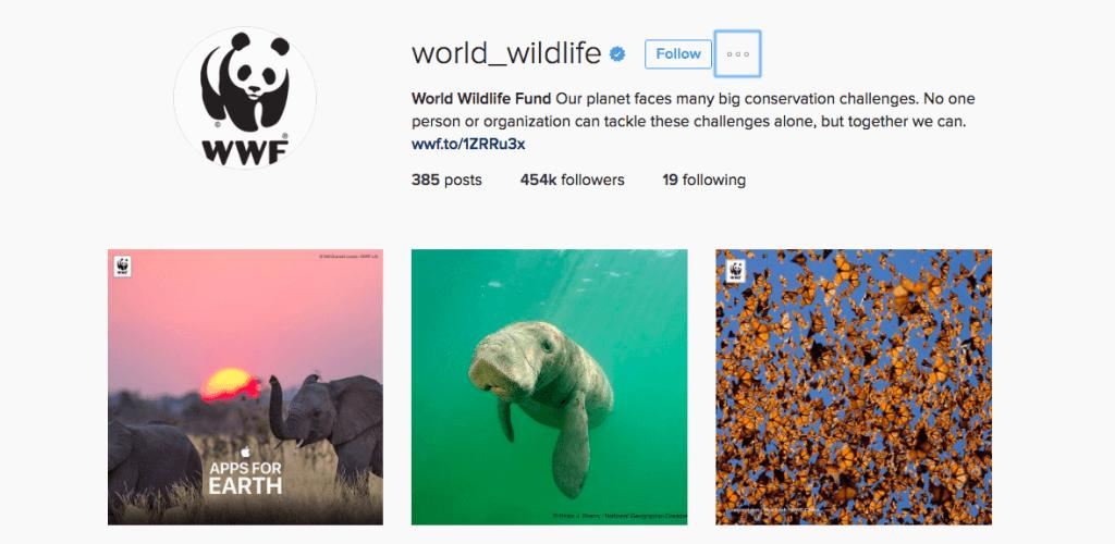 interaja com causas sociais - como ganhar seguidores no instagram