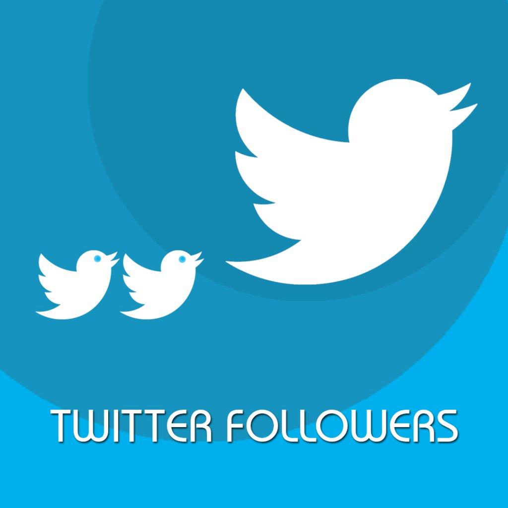 como ganhar seguidores no twitter dicas