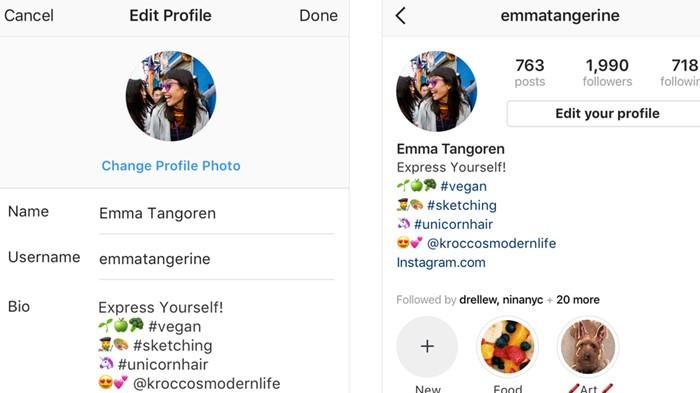 bio do instagram - como ganhar seguidores no instagram