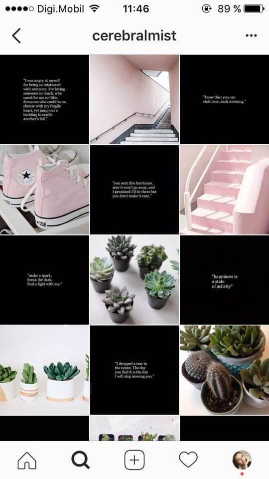 feed do Instagram xadrez