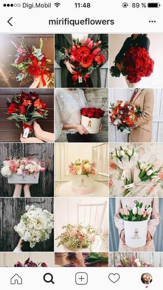 feed do instagram de flores